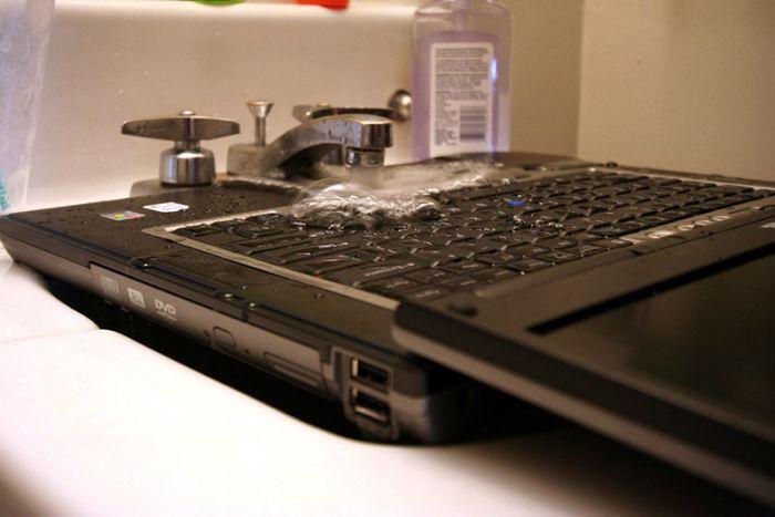 Ноутбук фото прикол мальвы