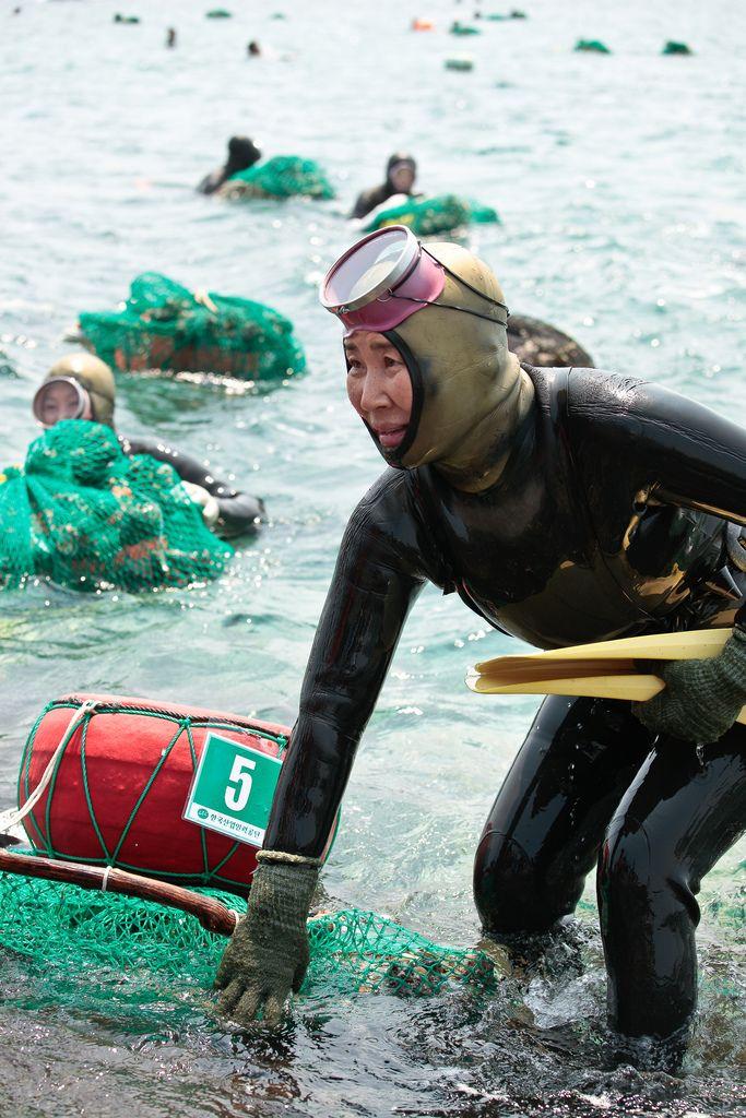 4202 Корейские подводные бабушки