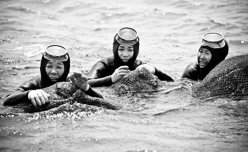 5175 Корейские подводные бабушки