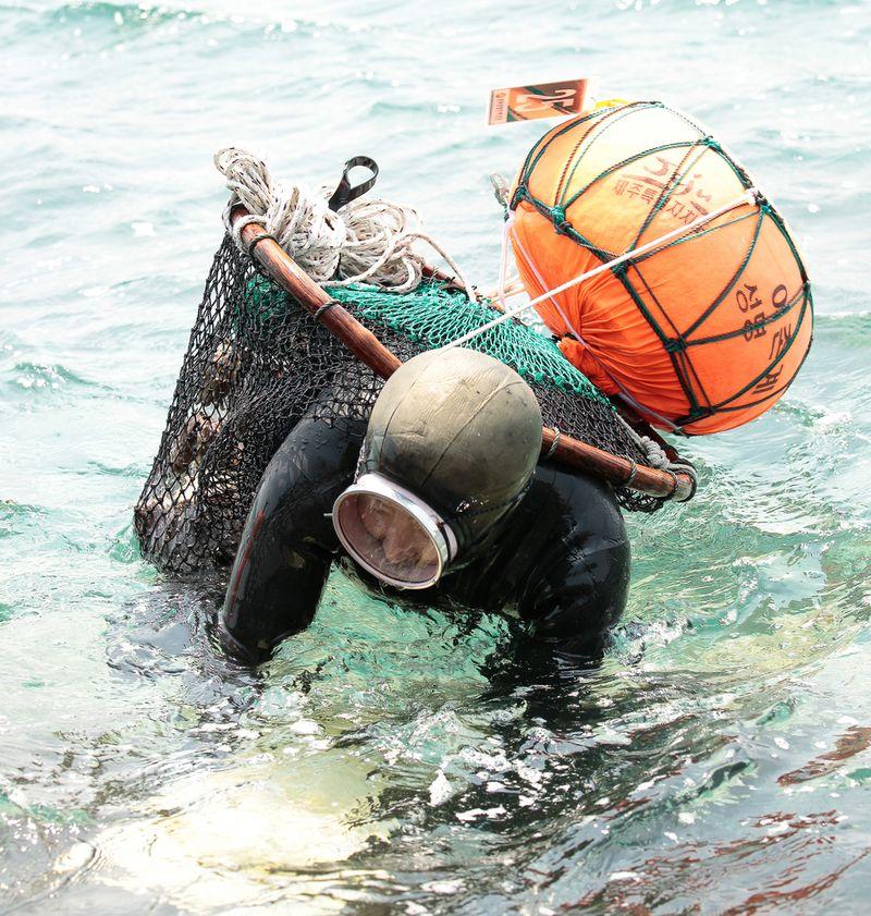 6165 Корейские подводные бабушки