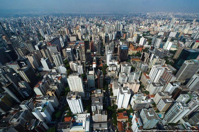 Из Сан-Паулу на пляж (34 фото)