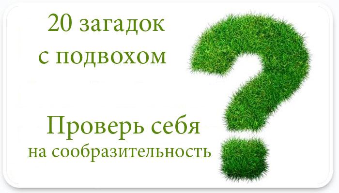Загадки с подвохом (20 загадок)