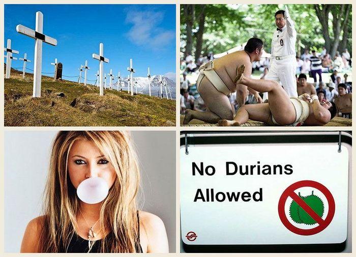 Странные законы мира (12 фото)