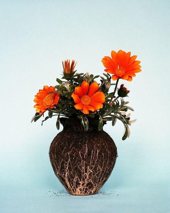 Земляные вазы (8 фото)