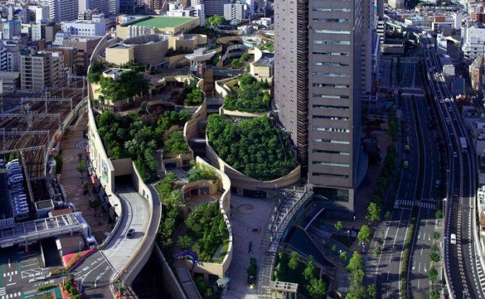 Японский парк (14 фото)