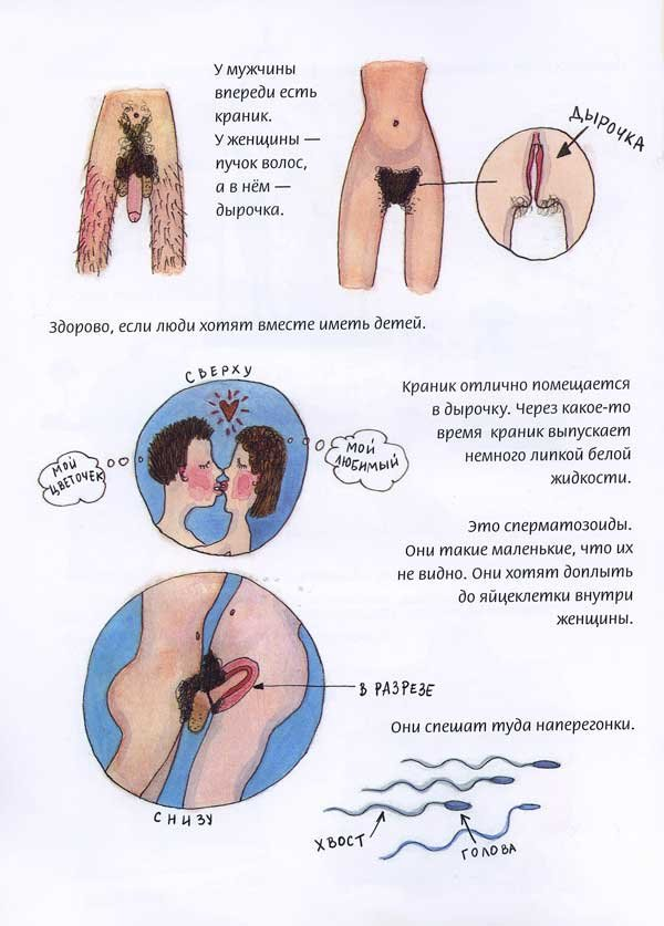 Сексуальная Энциклопедия для Подростков - картинка 1