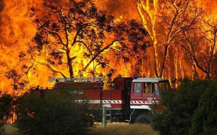 Пожар - Виктория, Австралия (февраль 2009)