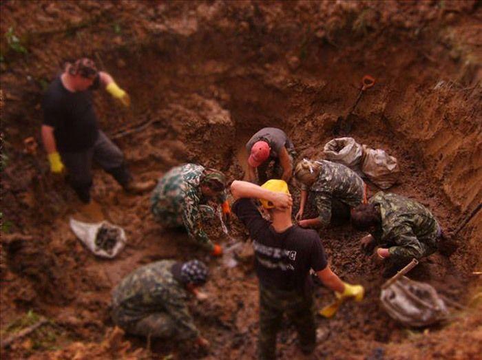 Фото находки поисковых отрядов