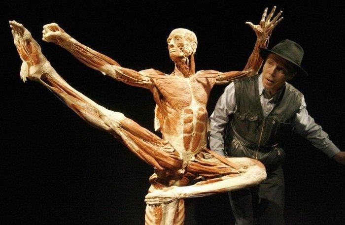 Выставка Миры тела – искусство или глумление? (16 фото)
