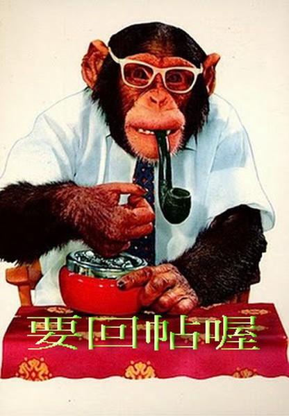 Вредные привычки среди обезьян (20 фото)