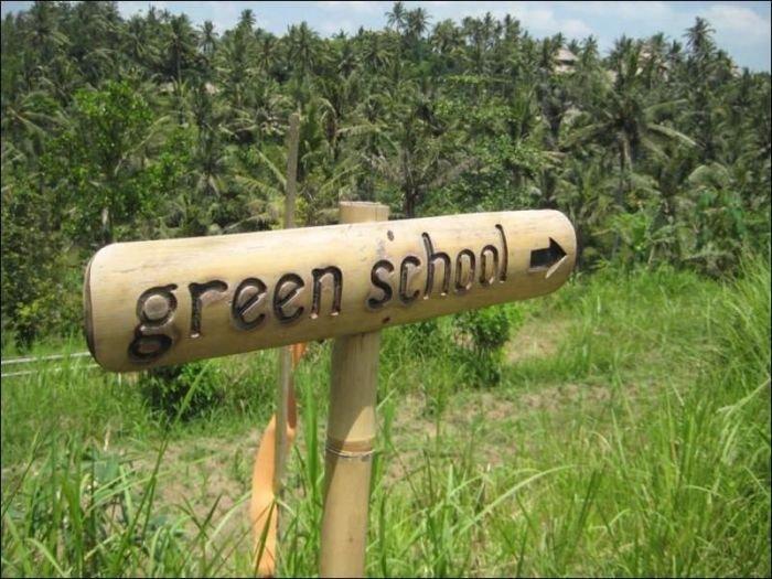 Зеленая школа на острове Бали (44 фото)