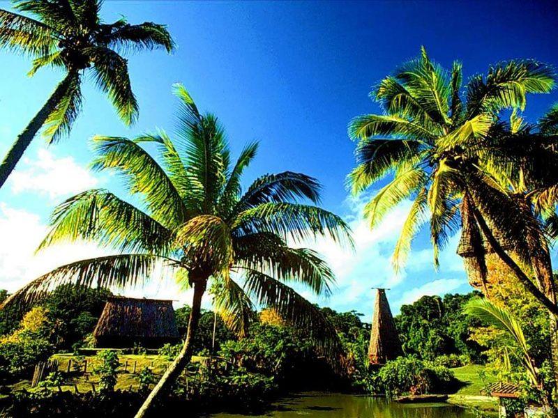 <b>НЕЗАВИСИМОСТЬ, КОТОРУЮ ПОТЕРЯЛИ ФИДЖИ</b><br/>В 2010 году Республики островов Фиджи праздновала  40-летний юбилей своей независимости. И в этом же году от главы госархива Салесиа Иканиваи поступило заявление об утере указа, подтверждающего независимость Фиджи. К счастью, копия документа сохранилась в Национальном архиве Великобритании.  В этом году был найдена копия декларации о  независимости Республики Гаити, которая считалась утерянной.