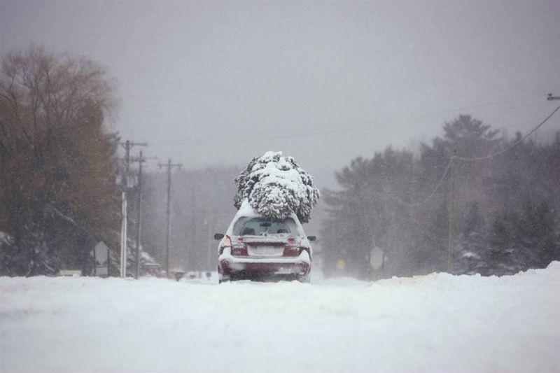 19. Автомобиль с елкой на крыше едет по заснеженному полю в Траверс-Сити, штат Мичиган. (Keith King / Traverse City Record-Eagle)