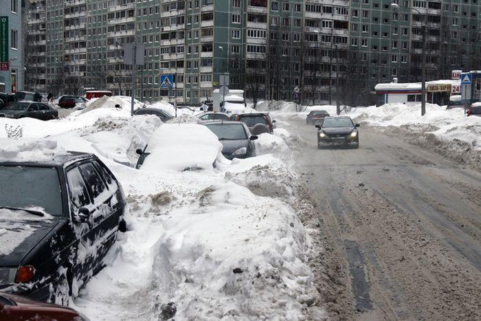 Автовладельцев обязали убирать улицы (12 фото)