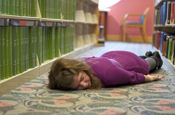 Библиотека погруженная в сон (45 фото)