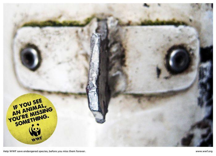 Всемирный фонд дикой природы (9 фото)