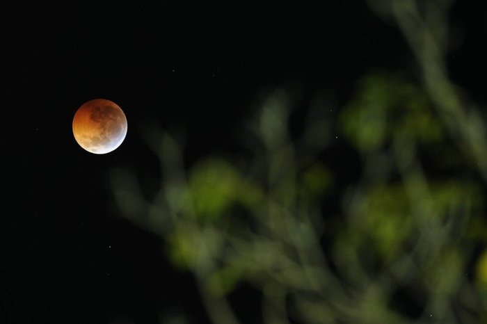 Лунное затмение (9 фото)