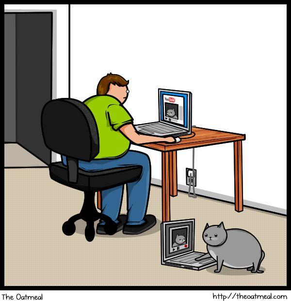 Отличный комикс про кота (20 фото)