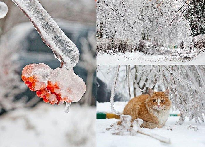 Ледяной дождь в Москве (25 фото + текст)
