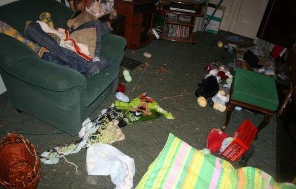 Хаски в вашей квартире (139 фото)