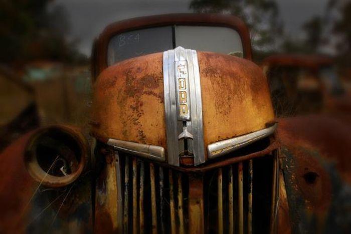 Брошенные американские автомобили (22 фото)
