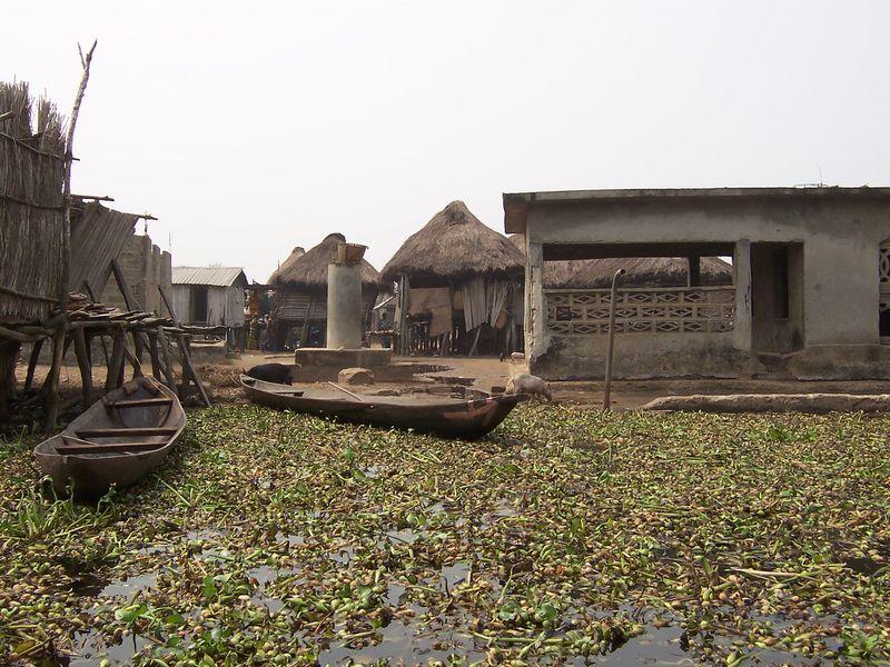 275 Африканская Венеция: Город озеро Ганвье