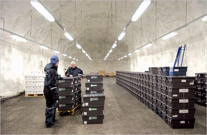 В Норвегии построили хранилище для всех семян Земли (23 фото)