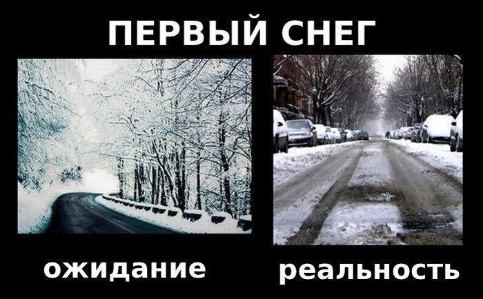 Зима – пора разочарований (8 фото)