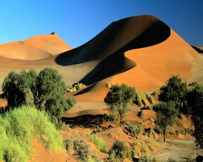 Красивейшие фотографии дюн (34 фото)