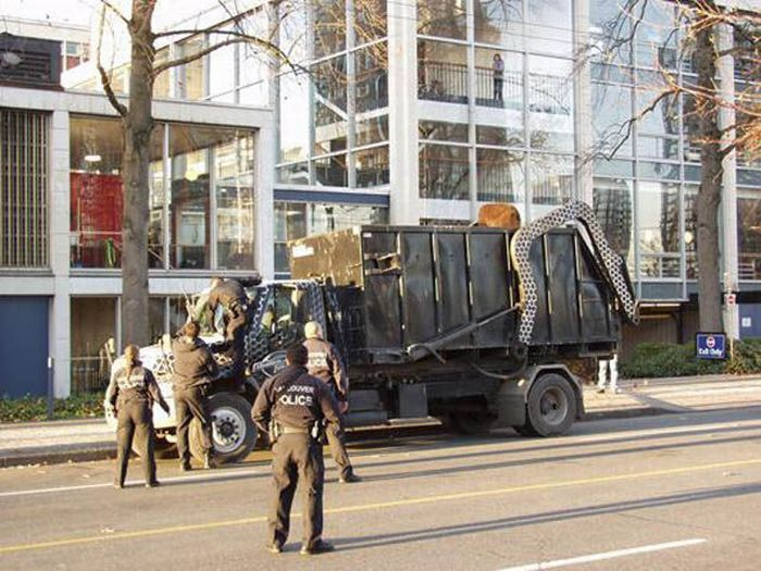Медведь в мусоровозе (14 фото)