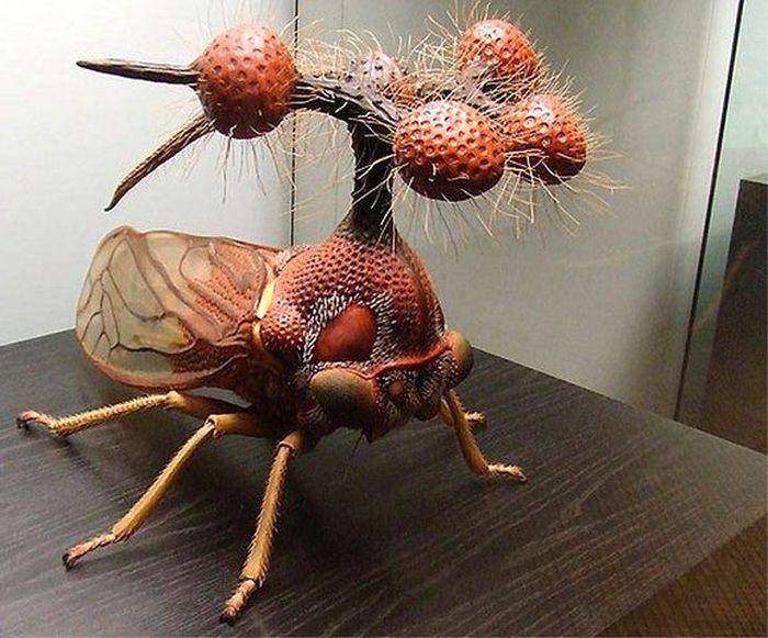 Самое уродливое насекомое на Земле (26 фото)