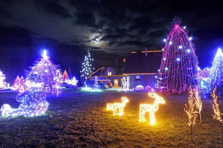 1,2 миллиона рождественских огней (12 фото)
