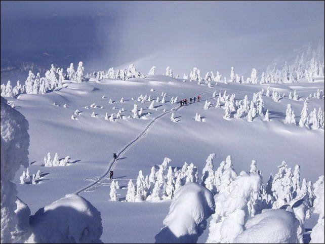 Cнежные монстры (11 фото)