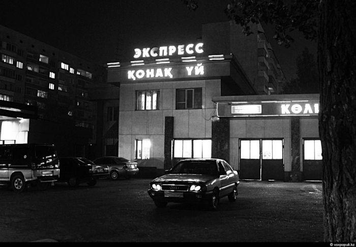 Ночные бабочки Казахстана (24 фото)