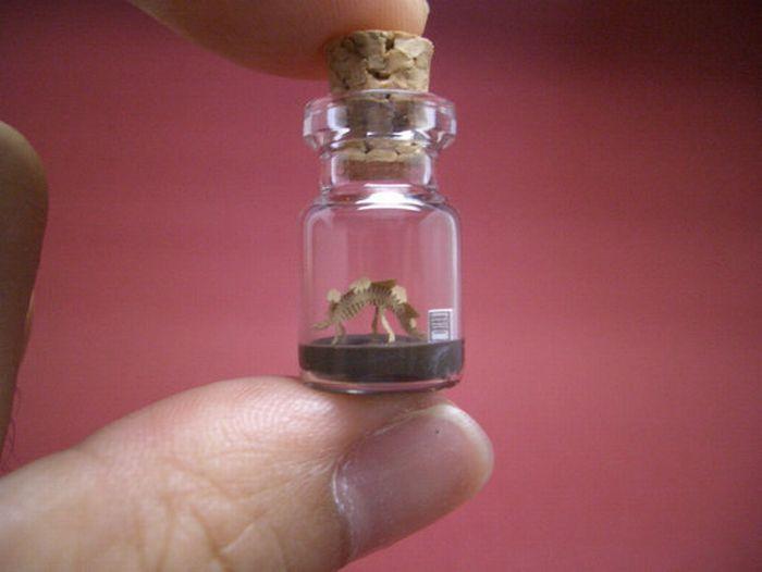 Крошечный мир в миниатюрных бутылках (27 фото)