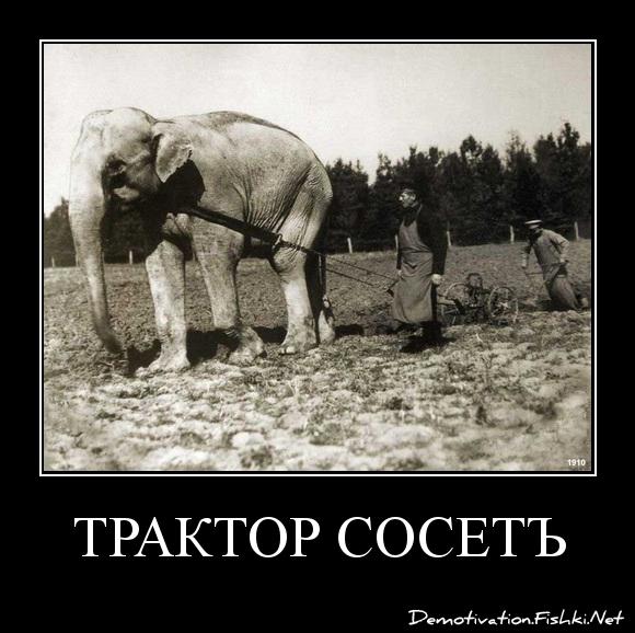 трактор сосетъ