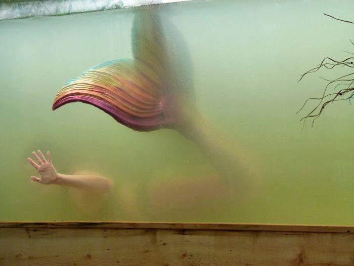 Фотоприкол русалка