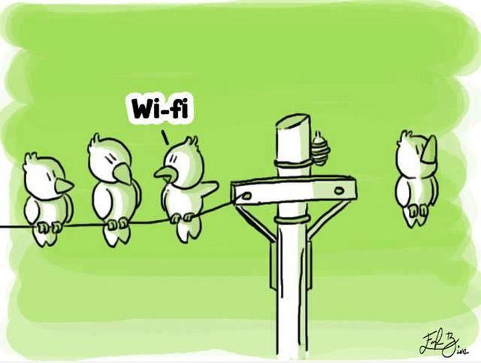Пикантный фотоприкол wi-fi, комикс