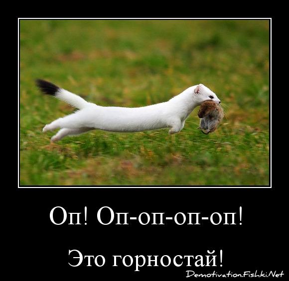Оп! Оп-оп-оп-оп!