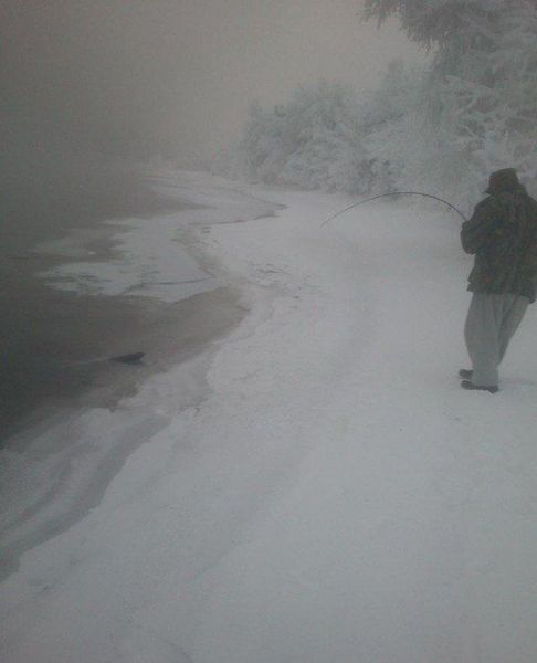 форель, улов, рыбалка, зимняя рыбалка