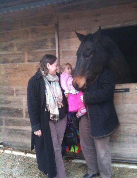 Юмор голова лошади, конь, лошадь, мама и дочь, прикол