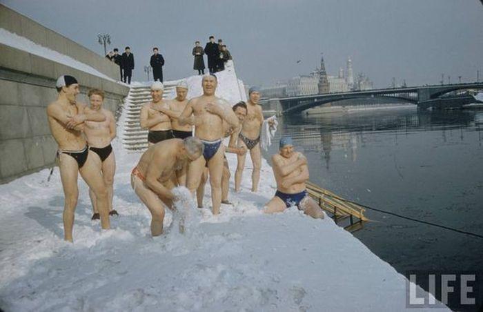 мороз, холод, моржи, москва, снег