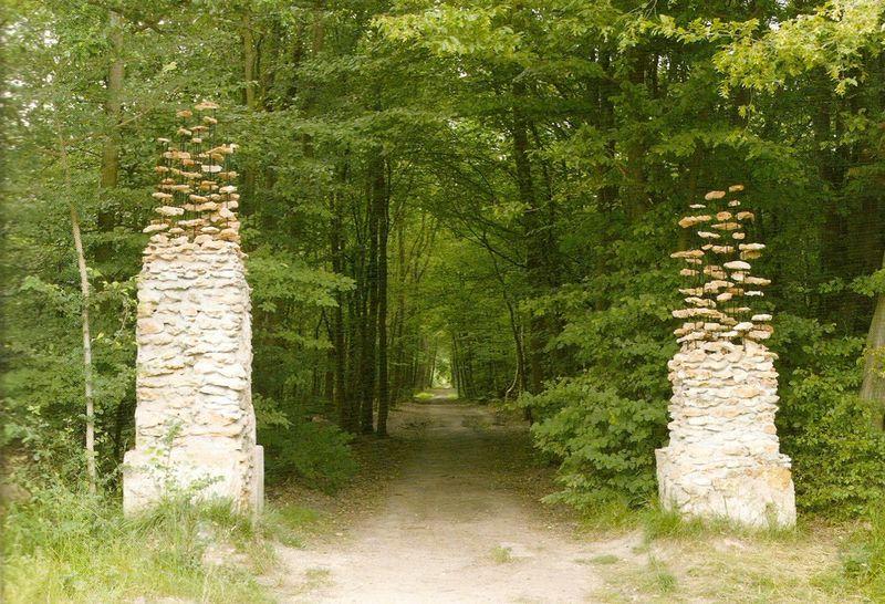 Бесплатно фото грибы, красота природы, лес, скульптура