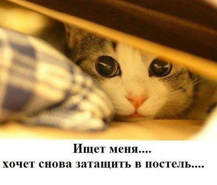 Фотоальбом