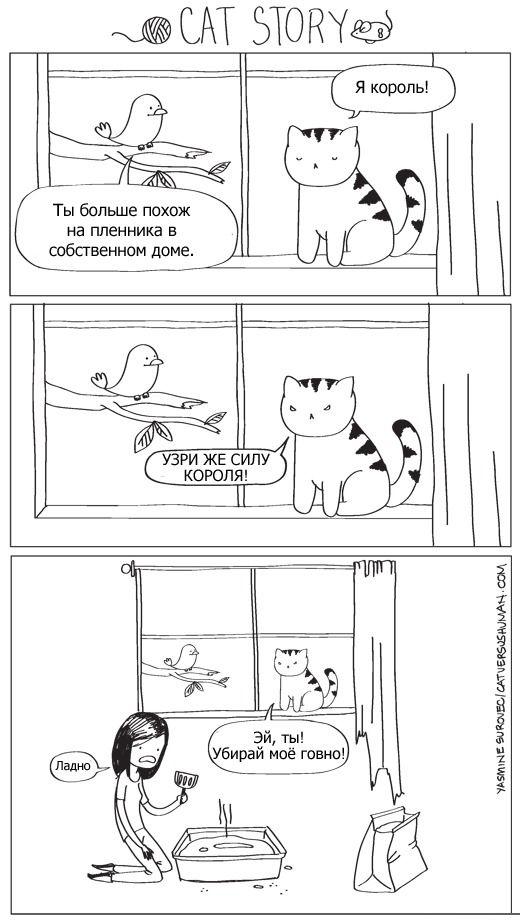 Фанни фото комиксы, король, кот, кошачий туалет, убирает, хозяин