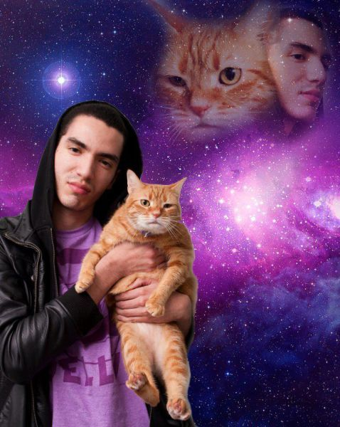 Новые фото мастер фотошопа, питомец, прикол, рыжий, фото с котом