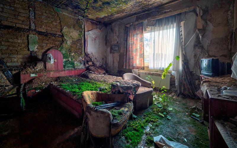 Смешные рисунки бомжатник, бунгало, жилище, заброшенная, мох, халабуда, халупа