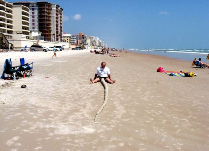 Свежий фотоприкол море, мужик, на пляже, пошлое, прикол, фотография
